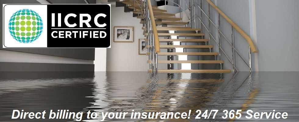 flood removal service florida